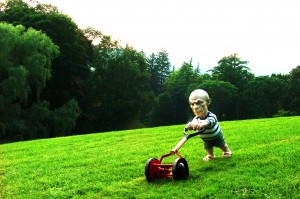 seedbed-picasso-mowing-the-lawn-elliott-arkin
