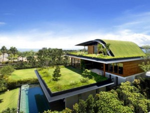 Some-parts-of-this-eco-friendly-house-design-used-transparent-large-glasses